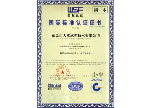 天泓-国际标准认证证书